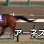 【グラおた第10号】アーネストリー引退、種牡馬入り/セイウンワンダー近況