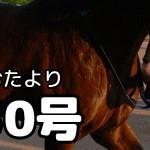 【グラおた30号】10月19日・20日の出馬表
