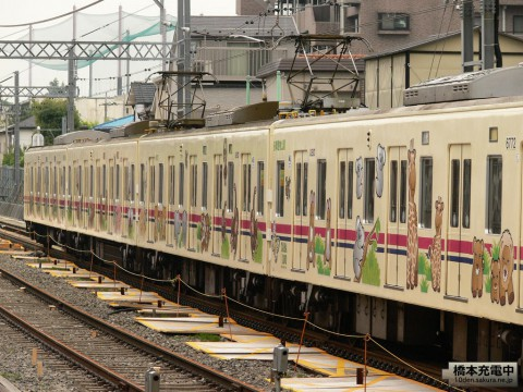 Tama Zoo Train 50周年記念号