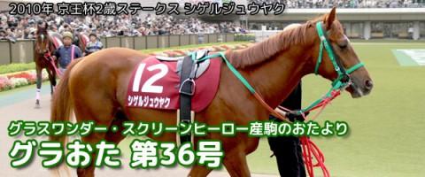 【グラおた36号】モーリス京王杯2歳Sに出走/11月9日・10日の出馬表