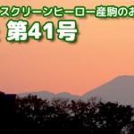 【グラおた41号】ブロンドヒロイン中央復帰/先週の結果/今週の競走馬登録/