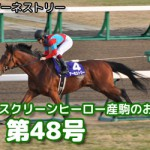 【グラおた48号】ニンジャ、阪神カップ出走/12月21日・22日・23日の出馬表