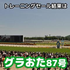 【グラおた87号】5月24日・25日の出馬表/4000万円超えの産駒も!トレーニングセール結果