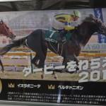 今年は出走予定馬の写真も掲載 京王電鉄「第81回日本ダービー」車体・車内広告@9031F