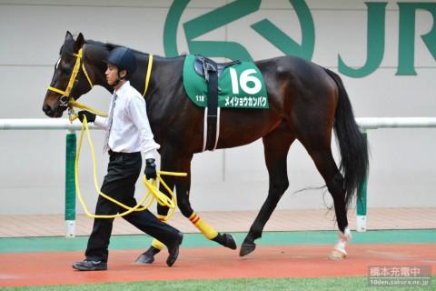 メイショウカンパク 2015/11/15 福島記念