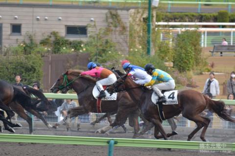オーシャンヒーロー 2015/11/15 福島9R