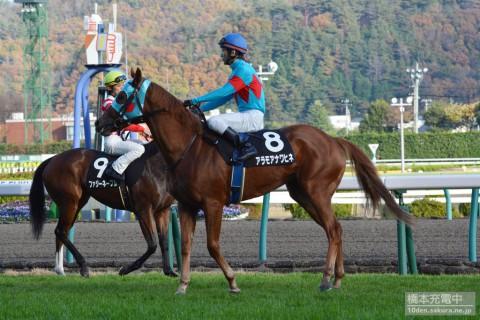 アラモアナワヒネ 2015/11/15 福島2歳ステークス