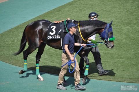 クライスマイル 2015/05/03 東京競馬場 オアシスステークス