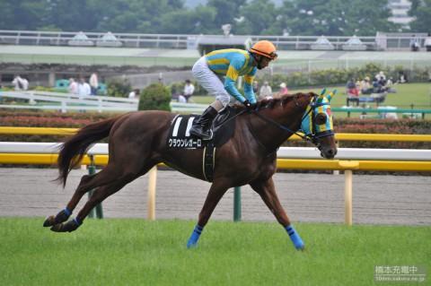 クラウンレガーロ 2015/05/16 東京競馬場 秋川特別