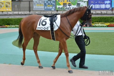 シャイニーユース 2015/10/10 東京競馬場 2歳新馬