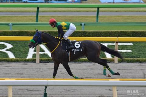 クライスマイル 2015/10/31 赤富士ステークス