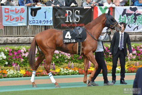 プロトコル 2016/04/24 東京競馬場