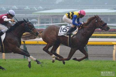 ウインドオブホープ 2015/11/08 2歳新馬