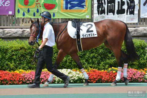 ウインオスカー 2016/05/29 東京競馬場