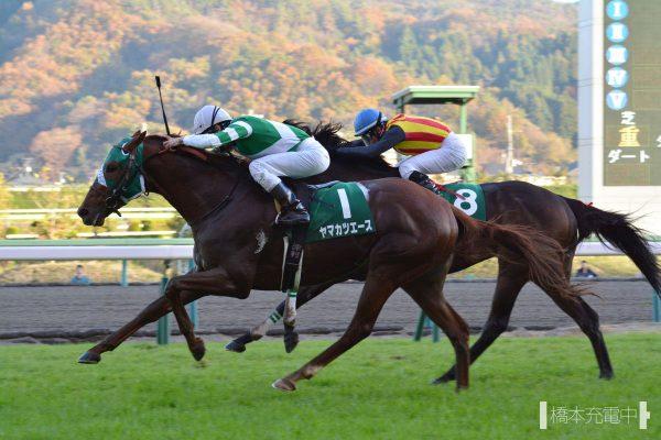ヤマカツエース 2015/11/15 福島競馬場