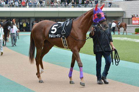 アルミューテン 2016/10/22 東京競馬場