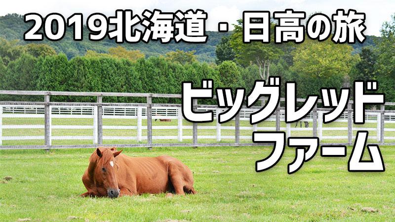 2019北海道・日高の旅 2日目(前編) ビッグレッドファームでグラスワンダーと再会