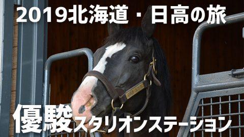 2019北海道・日高の旅 2日目(後編) 種牡馬1年目のゴールドアクターとご対面