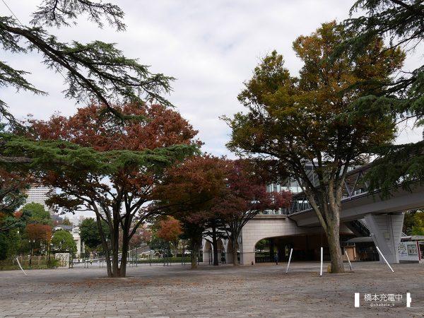 東京競馬場パドック付近