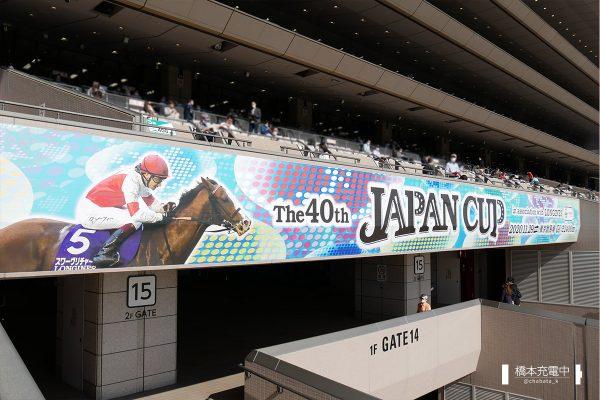 東京競馬場 ジャパンカップ装飾